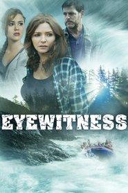 Eye witness - Testimone involontario