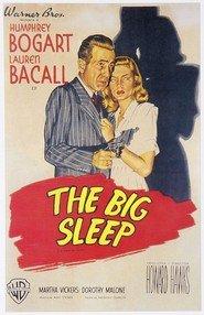 Il grande sonno