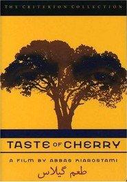 Il sapore della ciliegia