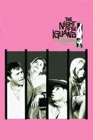 La notte dell'iguana