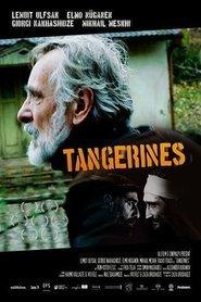 Tangerines - Mandarin