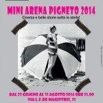 Mini Arena del Pigneto 2014: il bel cinema d'estate.