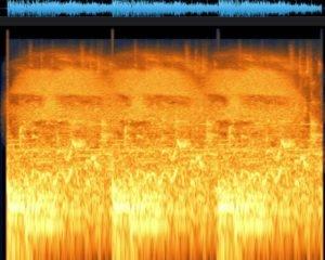 Lo spettrogramma con Bardem
