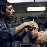 """Oscar 2019: """"Dogman"""" di Garrone è fuori dalla shortlist per il miglior film straniero"""