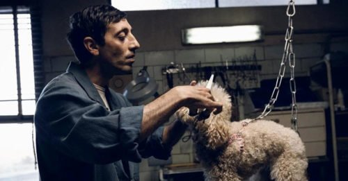 """""""Dogman"""" è il film italiano in corsa per gli Oscar 2019"""