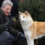 richard gere hachiko