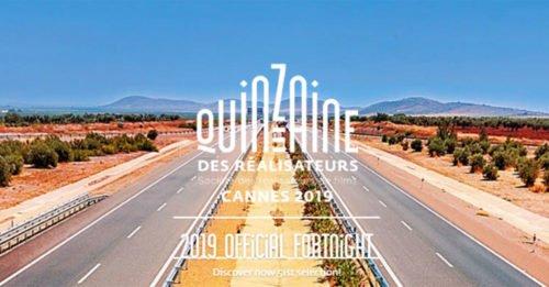 Cannes 2019: al festival, ci sarà anche il nuovo film di Luca Guadagnino